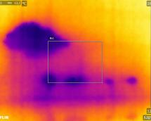 thermographie recherche d'infiltrations